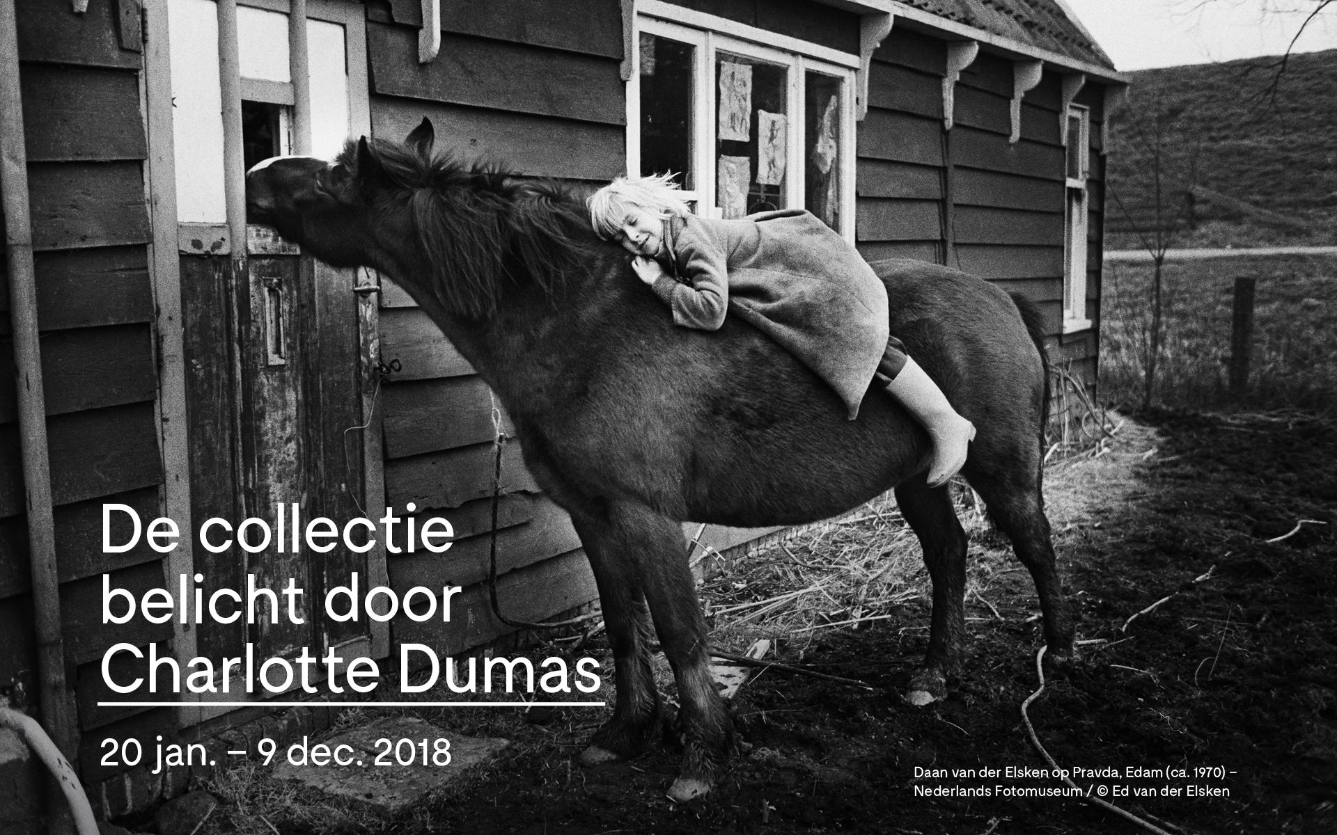 collectie-belicht-charlotte-dumas