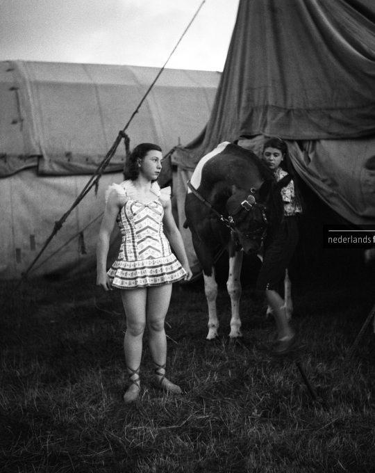 Circus van Bever, Lucebert