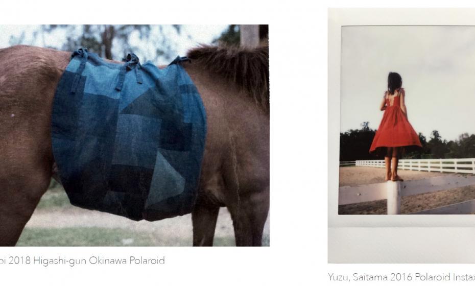 Polaroid_dumas